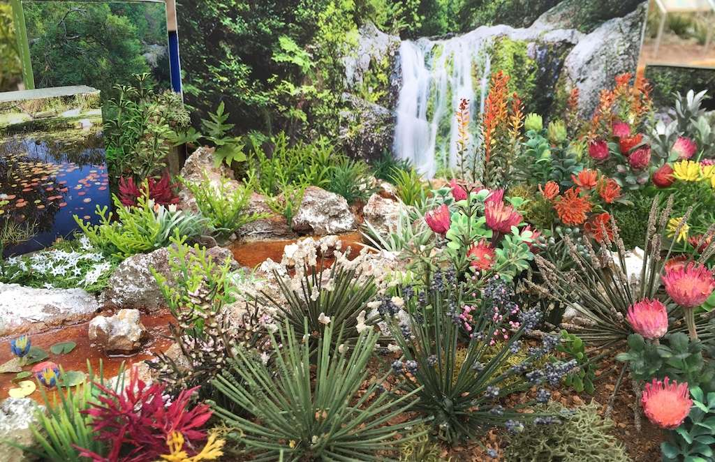 Vip access chelsea tours Winner chelsea flower show 2017
